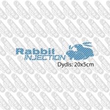Rabbit Injection