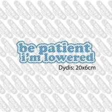 Be Patient I'm Lowered (text)
