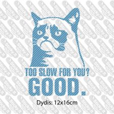 Too Slow For You? GOOD
